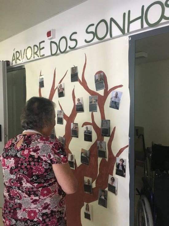 Árvore dos Sonhos da Santa Casa da Misericórdia da Vila do Bispo